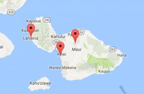Contact Maui